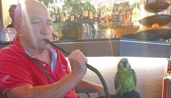 Dal 2013, in seguito ad un incidente in missione in Iraq, Francesco è sulla sedia a rotelle.<br> A fargli compagnia un pappagallo impertinente che non si stacca mai dall'ufficiale pluridecorato.<br> Ecco la loro storia…