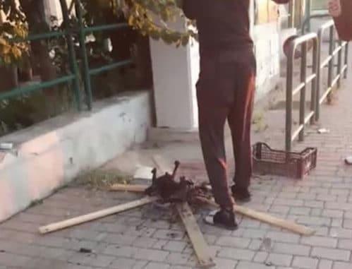 Barbecue di gatto davanti alla stazione <br> Non è la prima volta che africani arrostiscono cani e gatti