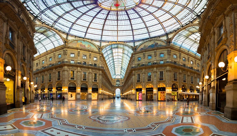 A Milano 10 mila gatti randagi, 600 colonie feline e 1000 volontari <br> Pure sui tetti della Galleria dimorano mici