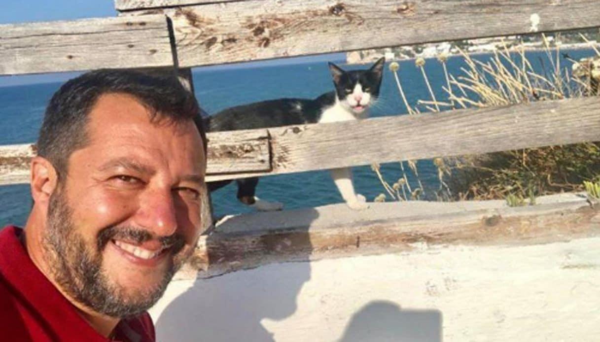 In Italia solo la destra è animalista <br> Salvini, gattolico convinto, si becca le offese dei detrattori