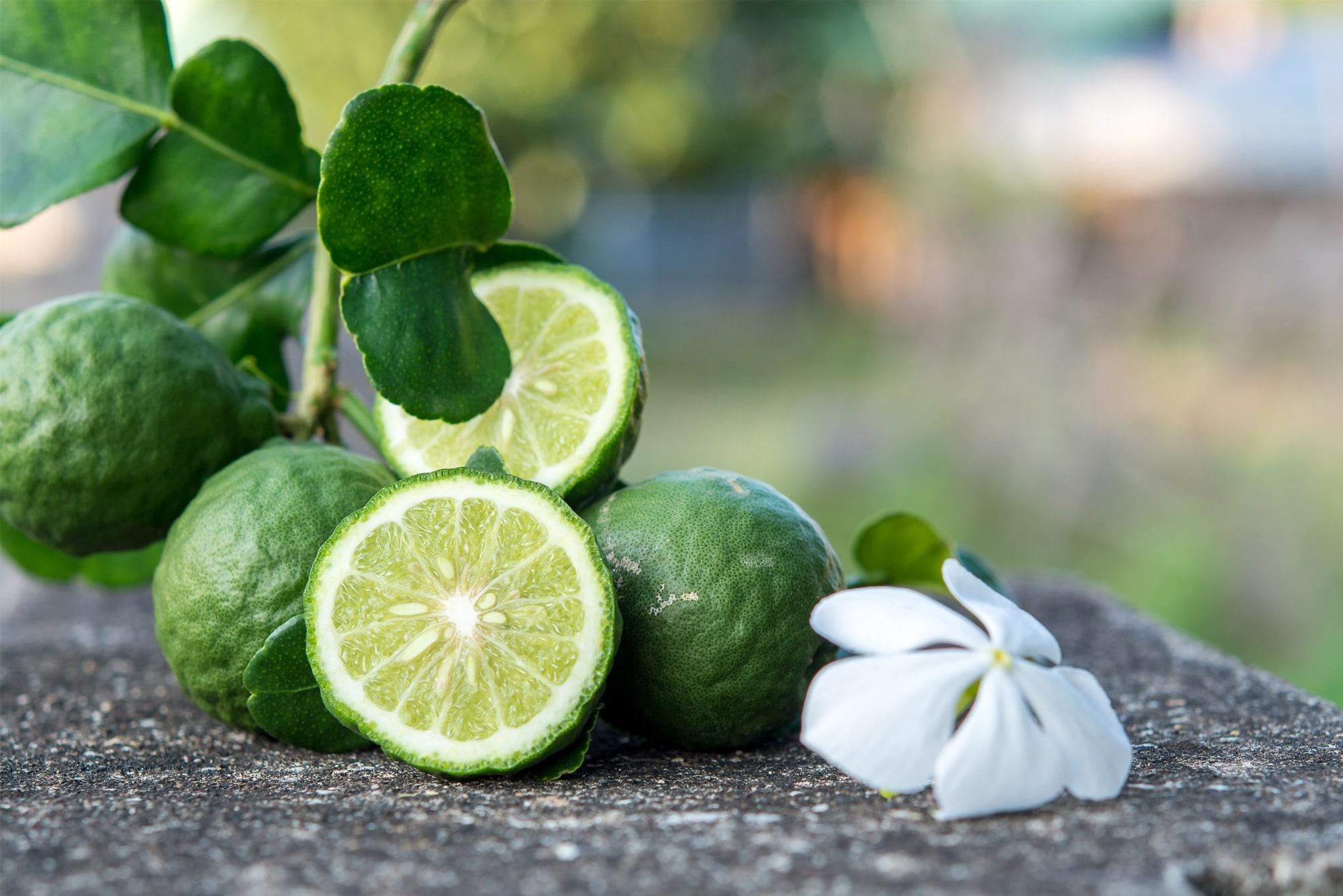 Ingrediente indispensabile dei profumi più pregiati e anche della Coca-Cola.<br> Il bergamotto è l'oro verde di Calabria, eppure i calabresi non lo sfruttano abbastanza
