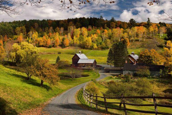 andare a vivere in campagna