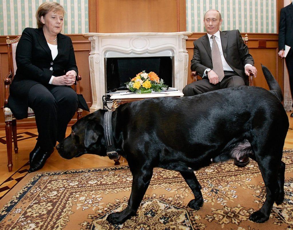 Macron sguinzaglia il suo cane per promuovere una legge contro l'abbandono.<br> Prima di lui Berlusconi fece ricorso a Dudù.<br> Da Garibaldi a Putin ecco i politici migliori amici di fido